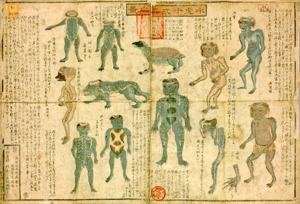 水虎十二品之図(坂本浩然 画)