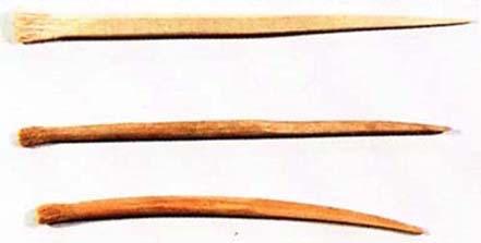 房楊枝(江戸時代の歯ブラシ)の拡大画像