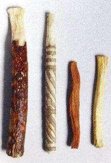 歯木(古代の歯ブラシ)の拡大画像