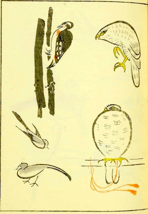 『鳥獣略画式』4-1(1797年、北尾政美 画)