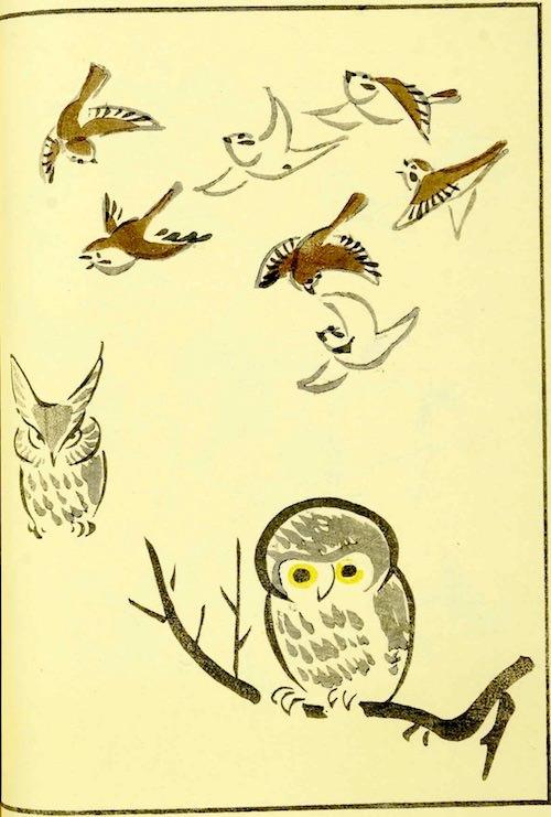 『鳥獣略画式』4-2(1797年、北尾政美 画)