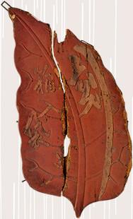江戸時代のタバコ屋の看板