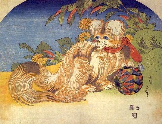 葛飾北斎が描いた小型犬「狆」
