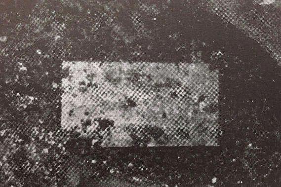 和宮のお墓から出てきた写真。被写体は夫の家茂ではといわれている