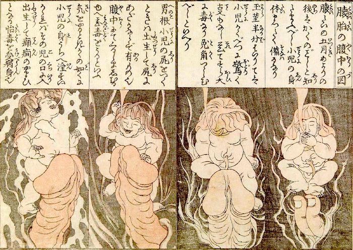 江戸時代の性に関する指南書、百科事典(『枕文庫』より「懐胎腹中の図」、渓斎英泉 画)