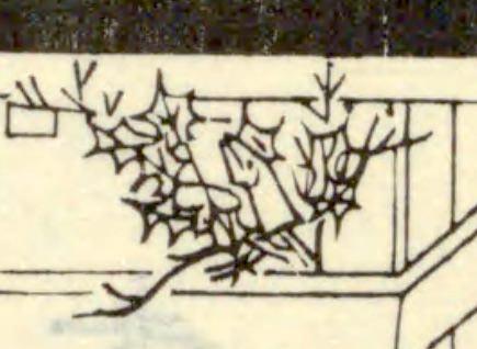 柊鰯(『日本風俗図絵』より)