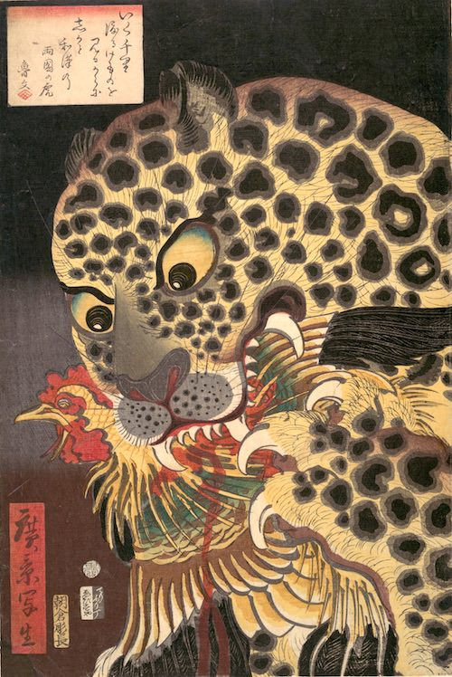 ヒョウの浮世絵(無題、1860年、歌川広景 画)