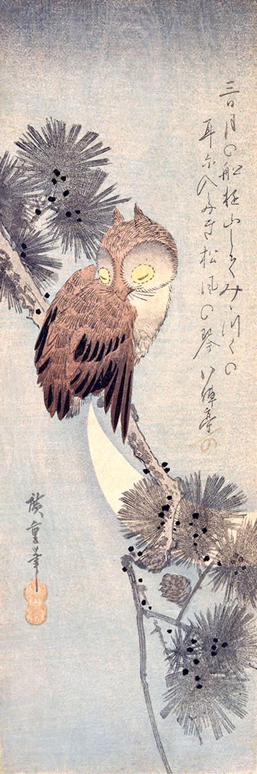 『月に松上の木菟(みみずく)』(五代歌川広重 画)