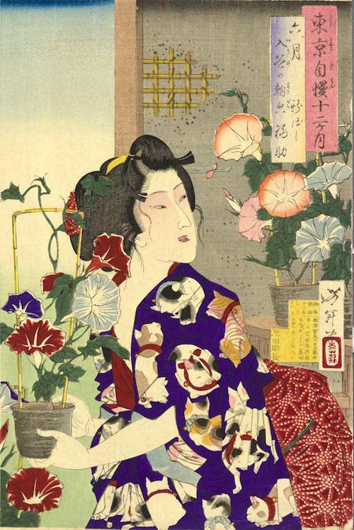 『東京自慢十二ヶ月 六月 入谷の朝顔 新ばし 福助』(月岡芳年 画/1880年)