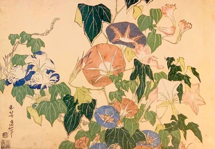 『朝顔と蛙』(葛飾北斎 画)