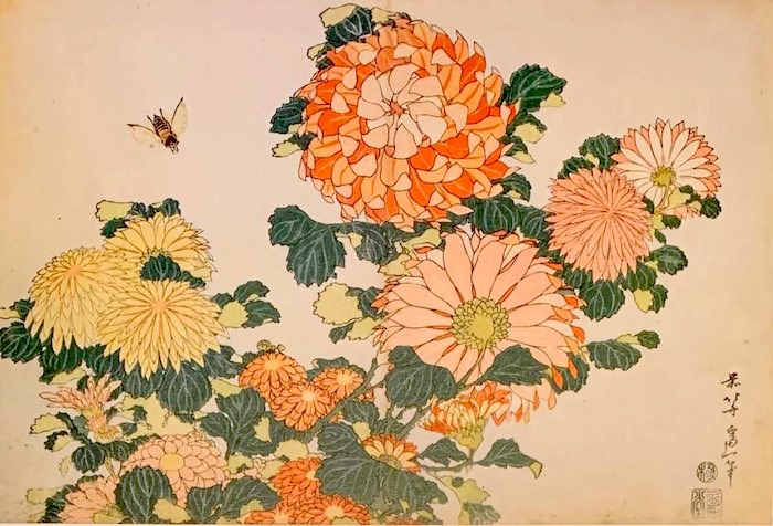 『菊に虻』(葛飾北斎 画)