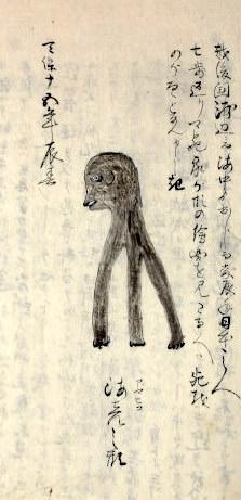 アマビコ(江戸時代の未確認生物)その1