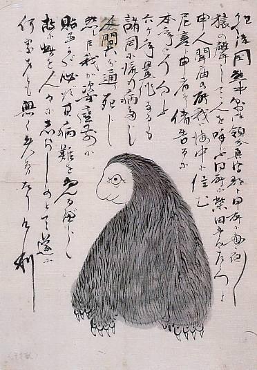 アマビコ(江戸時代の未確認生物)その2