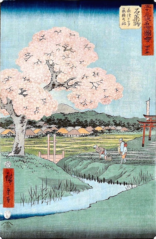 Ishiyakushi: Yoshitsune's Cherry Tree and the Shrine of Noriyori (Ishiyakushi, Yoshitsune sakura Noriyori no hokora)